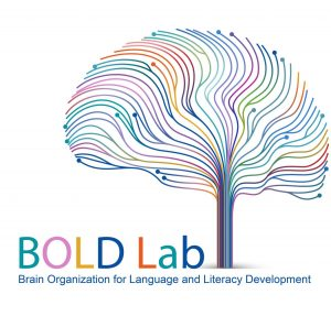 bold lab icon which is an image of a colorful brain