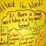 Spelling & Word Study
