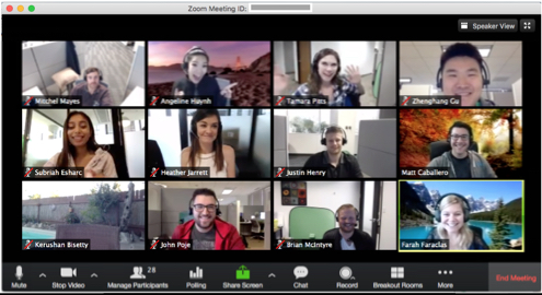 a Zoom videoconference screen
