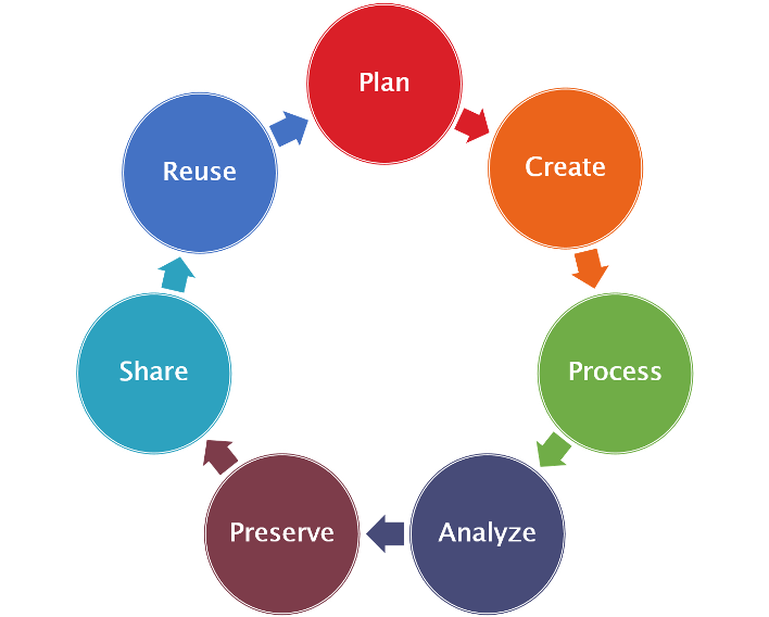 Research Data Management Process