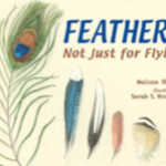 Book Cover: Feathers