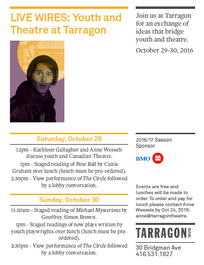 youth and theatre tarragon